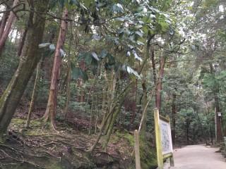 石上神社10