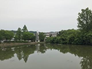 樋之池公園2