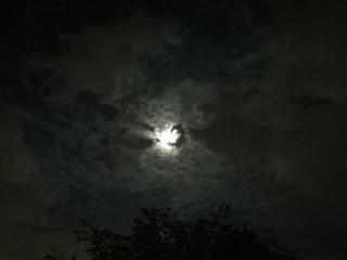 満月そろそろ