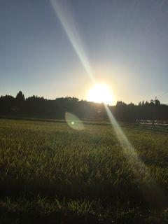 田舎2・縦